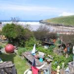 Jane Darke's Garden